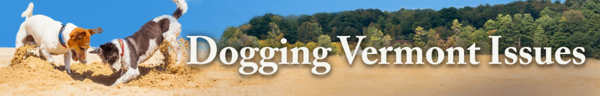 Dogging Vermont Issues